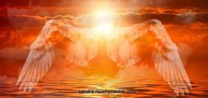 angel-574647_1280(1)
