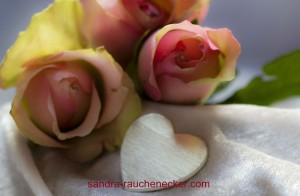 romance-644143_1280
